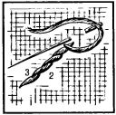 Рис. 3. Стебельчатый шов