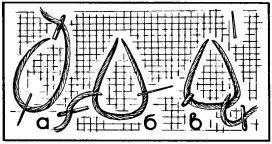 Рис. 5. Образование треугольной петли