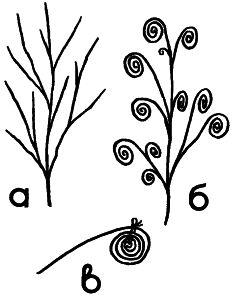 Рис. 1. «Цветы» для букета