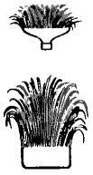 """Рис. 4. Части """"букета"""" с закрученными веточками"""